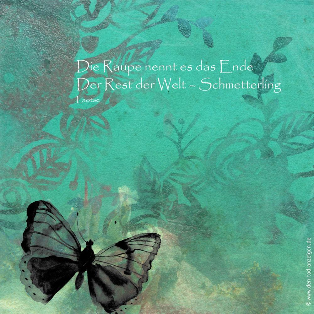 Die Raupe nennt es das Ende. Der Rest der Welt – Schmetterling. Laotse