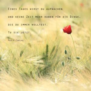 Eines Tages wirst du aufwachen und keine Zeit mehr haben für Dinge, die Du immer wolltest. Tu sie jetzt.