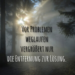 Vor Problemen weglaufen vergrößert nur die Entfernung zur Lösung.