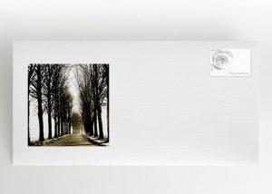 Ein von Bäumen umschlossener sonniger Weg - Briefumschlag Motiv F-12