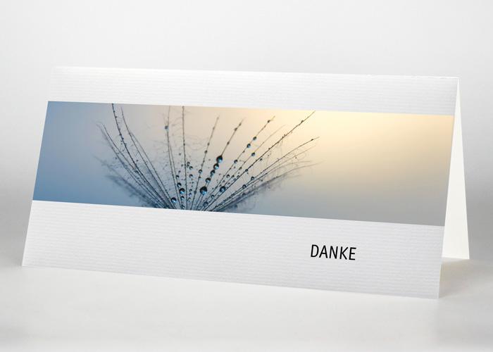 Detailaufnahme eines Pusteblumensamens - Danksagungskarte Motiv B-13