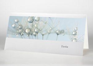 Detailaufnahme mehrere Pusteblumensamen mit Wassertropfen - Danksagungskarte Motiv B-18