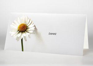 Gänseblümchen - Danksagungskarte Motiv B-21