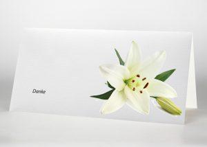 Lilie - Danksagungskarte Motiv B-23