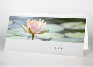 Einzelne Lotosblüte auf dem Wasser - Danksagungskarte Motiv B-38