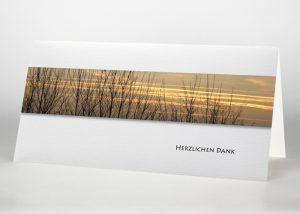 Baumspitzen ohne Blätter vor einem bunten Himmel - Danksagungskarte Motiv F-04