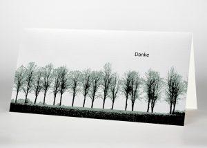 Eine Reihe von Laubbäumen - Danksagungskarte Motiv F-08