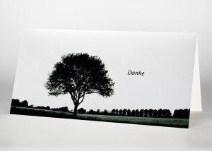 Einzelner Buche - Danksagungskarte Motiv F-09