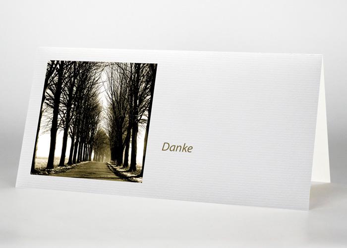 Ein von Bäumen umschlossener sonniger Weg - Danksagungskarte Motiv F-12