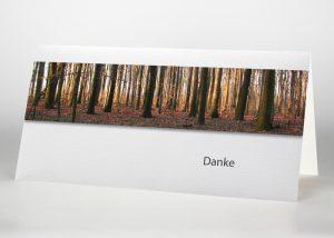 Bäume im Wald - Danksagungskarte Motiv F-13