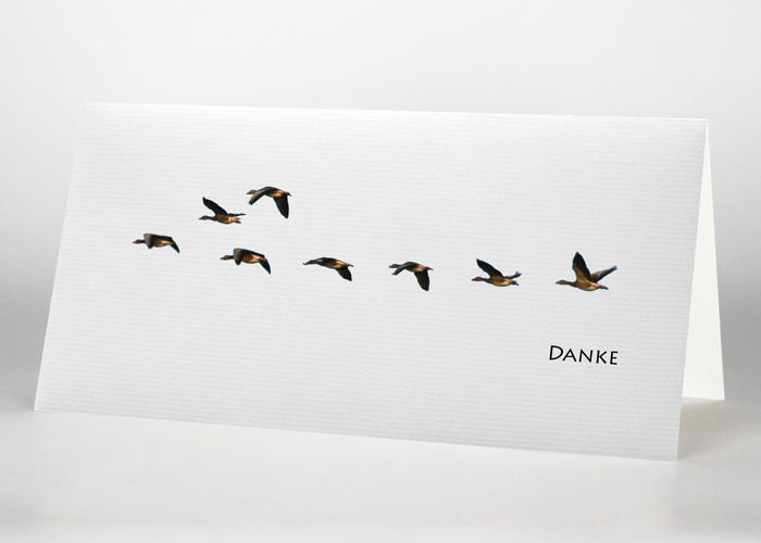 Eine Gruppe von Wildgänsen - Danksagungskarte Motiv F-27