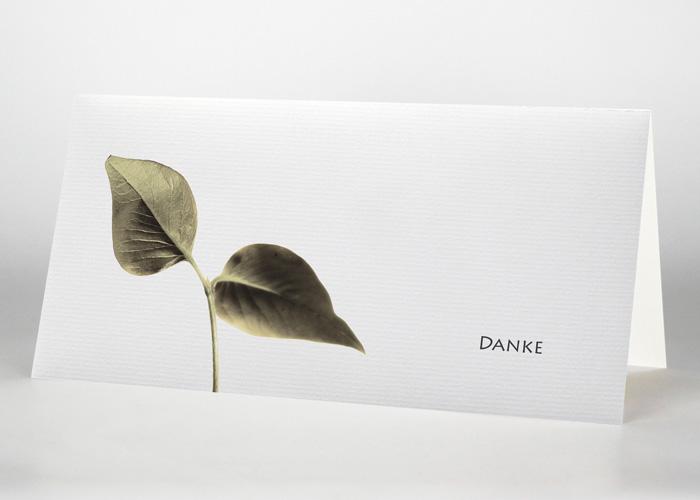 Kleiner Ast mit zwei Blättern - Danksagungskarte Motiv F-32