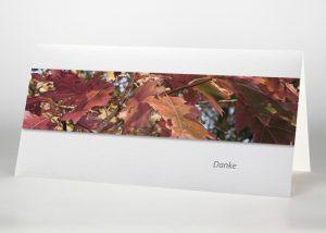 Bunte Herbstblätter - Danksagungskarte Motiv F-36