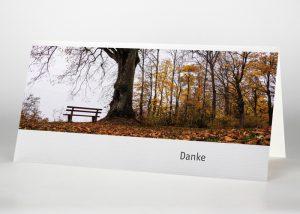 Einsame Bank im Wald - Danksagungskarte Motiv F-39