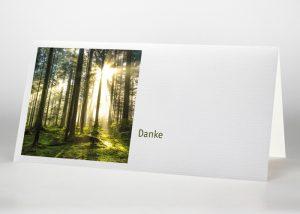 Sonnenstrahlen im Wald - Danksagungskarte Motiv F-40