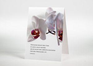 Rosa Orchidee - Sterbebildchen Motiv B-16