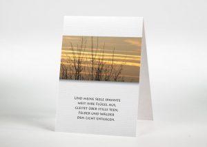 Baumspitzen ohne Blätter vor einem bunten Himmel - Sterbebildchen Motiv F-04