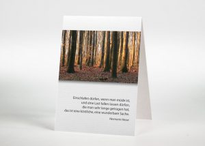 Bäume im Wald - Sterbebildchen Motiv F-13