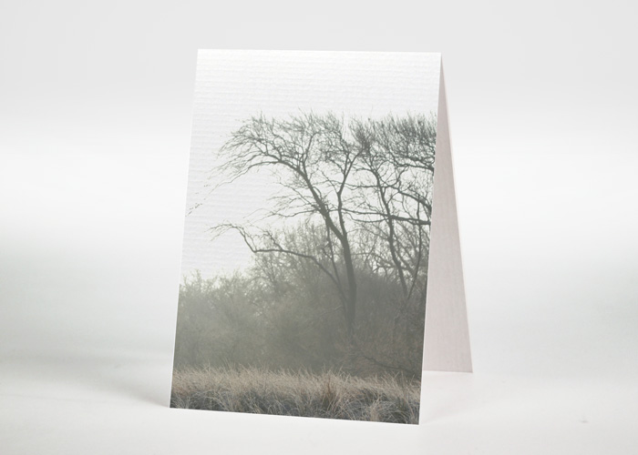 Landschaft im Nebel - Sterbebildchen Motiv F-15
