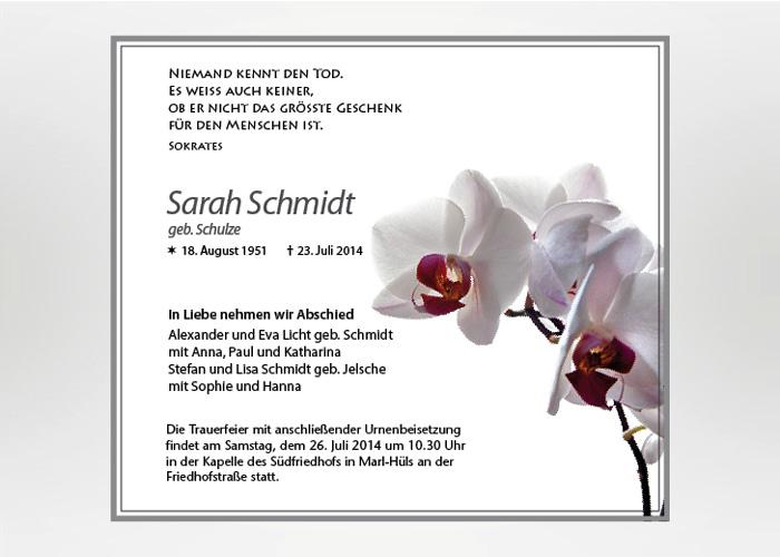 Rosa Orchidee - Traueranzeige Motiv B-16