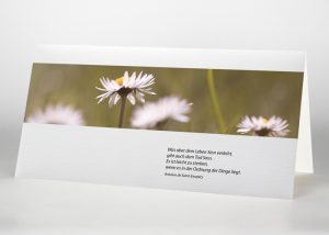 Margarite - Trauerkarte Motiv B-12