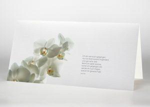 Weiße Orchidee - Trauerkarte Motiv B-15