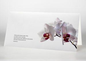 Rosa Orchidee - Trauerkarte Motiv B-16