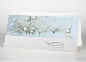 Detailaufnahme mehrere Pusteblumensamen mit Wassertropfen - Trauerkarte Motiv B-18