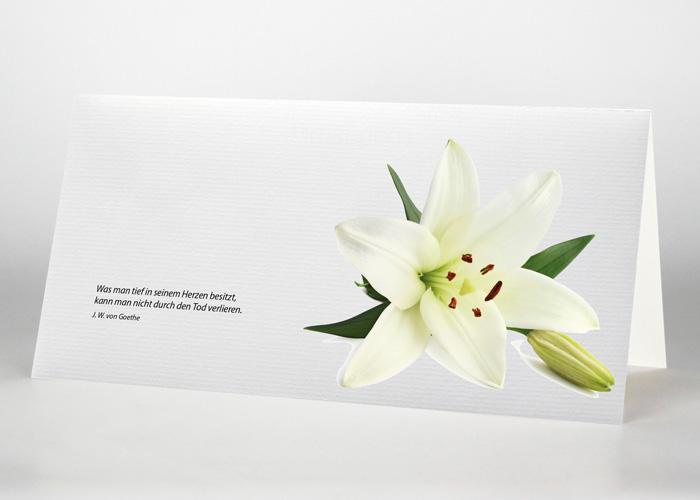 Lilie - Trauerkarte Motiv B-23