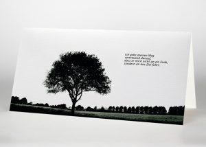 Eine einzelne Buche auf einer Lichtung - Trauerkarte Motiv F-09