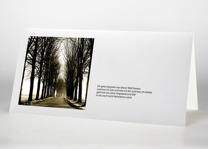 Ein von Bäumen umschlossener sonniger Weg - Trauerkarte Motiv F-12