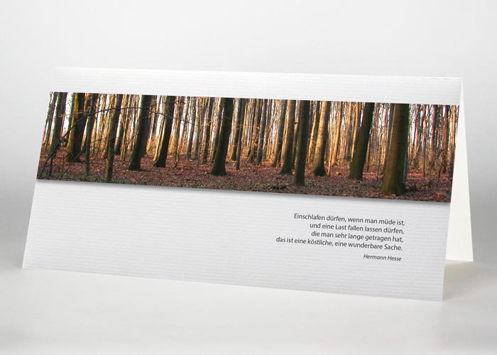 Bäume im Wald - Trauerkarte Motiv F-13