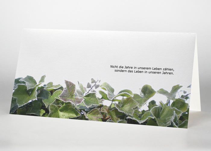 Mit Raureif bedeckter Efeu - Trauerkarte Motiv F-21