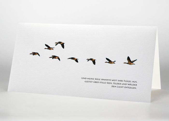Eine Gruppe von Wildgänsen - Trauerkarte Motiv F-27
