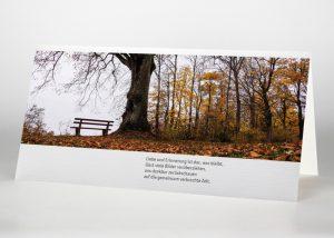 Einsame Bank im Wald - Trauerkarte Motiv F-39